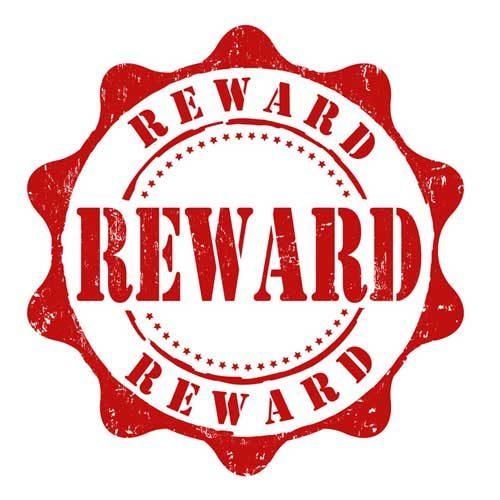 ontario bans the expiration of reward points discover magazine